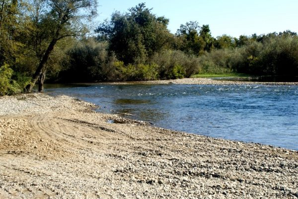 Tuolumne River Conservancy California - Bobcat Flat Phase 2 - Post-construction Path 3