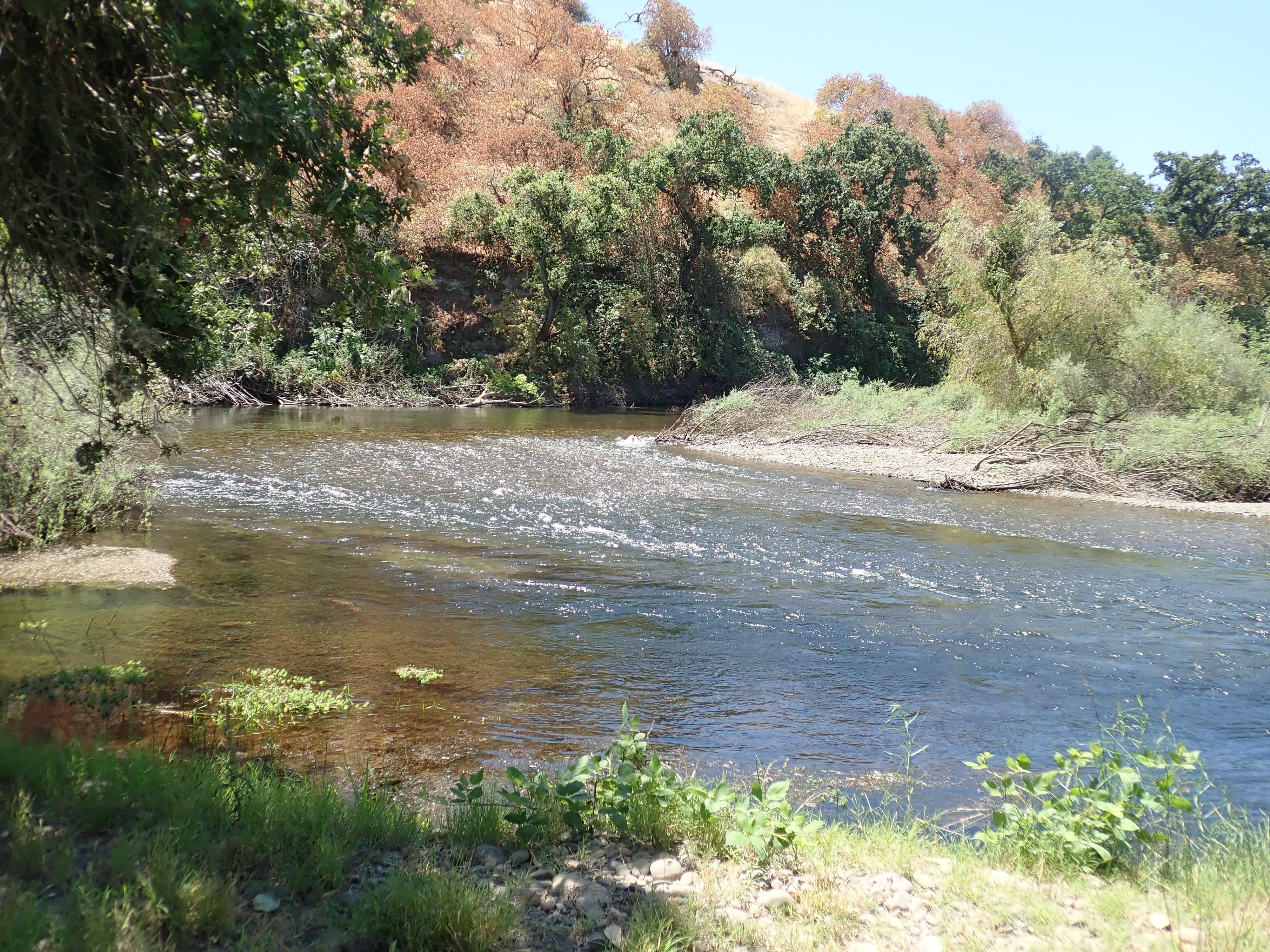 Tuolumne River Conservancy California