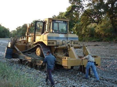 Tuolumne River Conservancy California - Bobcat Flat - D-8 Crawler Tractor Planting Cuttings