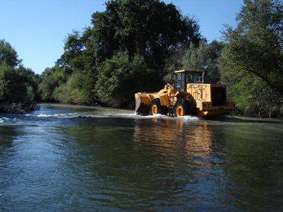 Tuolumne River Conservancy California - Bobcat Flat - Placing Spawning Cobble
