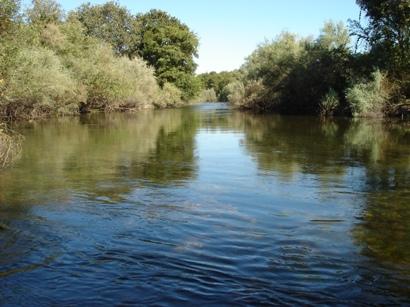 Tuolumne River Conservancy California - Bobcat Flat - Upper Patch 4 Before Spawning Restoration
